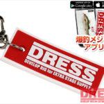 dress電子魚尺
